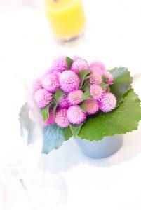 松岡伸一が撮影したピンクを基調とした花のテーブルフォト