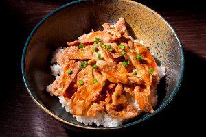 横浜市青葉区・都筑区近郊のキッチンスタジオで料理写真家が撮影した豚丼の写真
