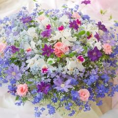 花*フラワーフォト