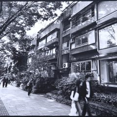 横浜の写真家が撮影した同潤会アパートありし日の表参道のモノクロ写真