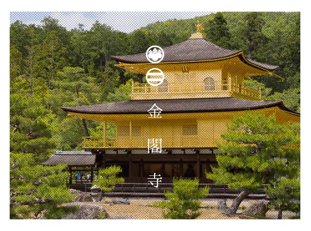 写真家松岡伸一が撮影した金閣寺
