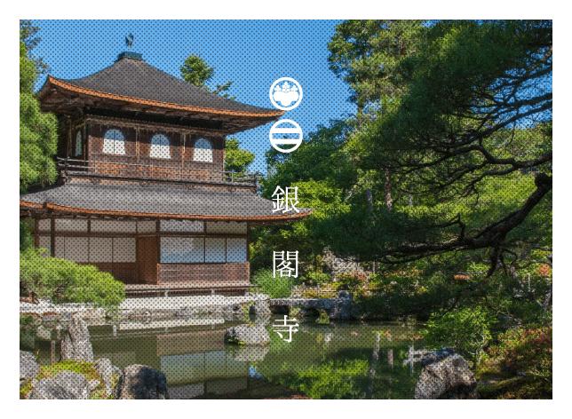 プロカメラマン松岡伸一が撮影した銀閣寺